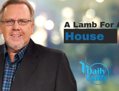 A Lamb For A House